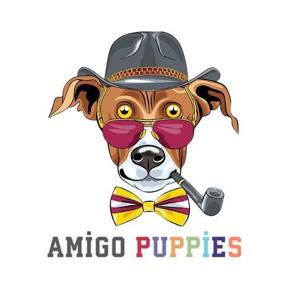 amigopuppies